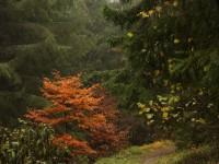 jesen na Slovensku