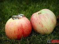 svadobne obrucky a prstene