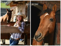 fotenie koni