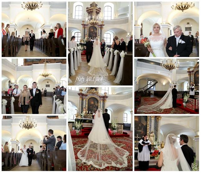 spanielsky svadobny zavoj