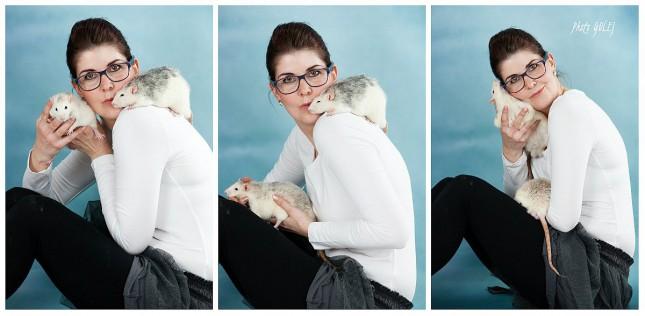 collage KS