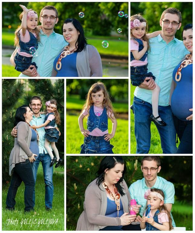 collage rod foto SIB