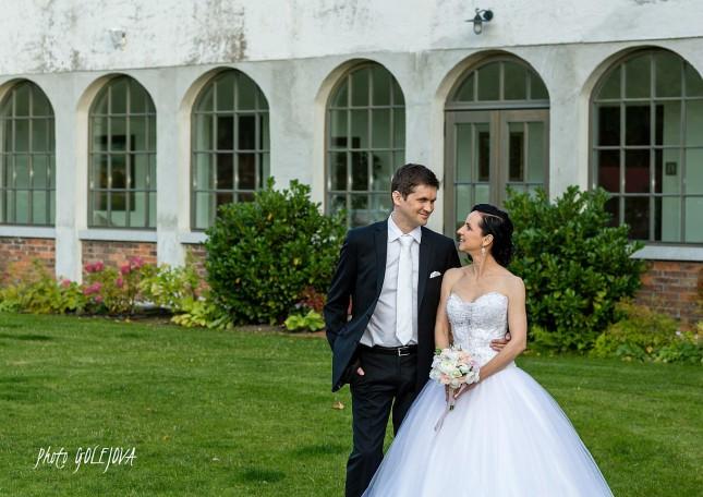 560 Wiegerova vila svadba