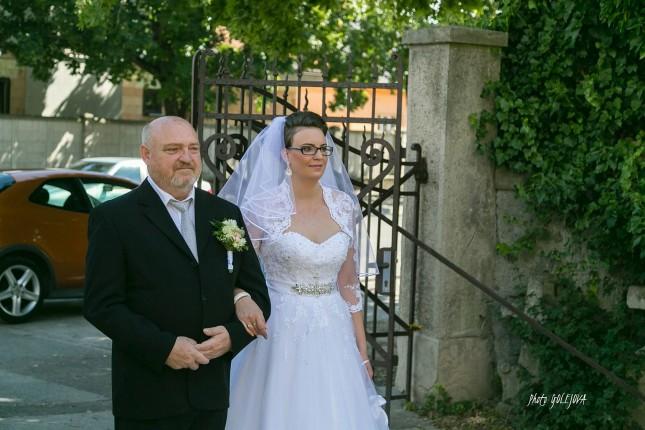 11 pred obradom svadba