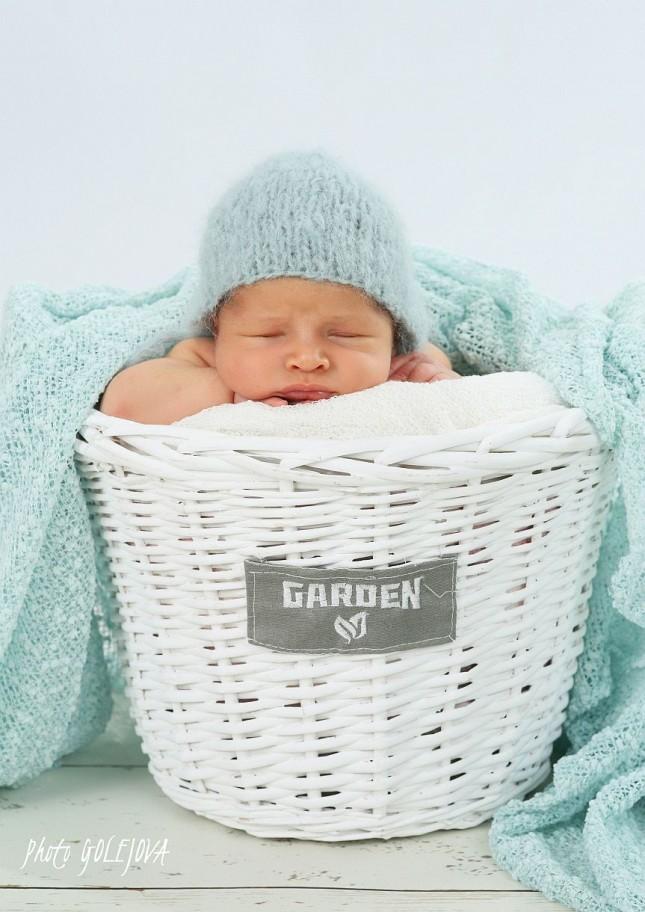 02 fotky s novorodencom