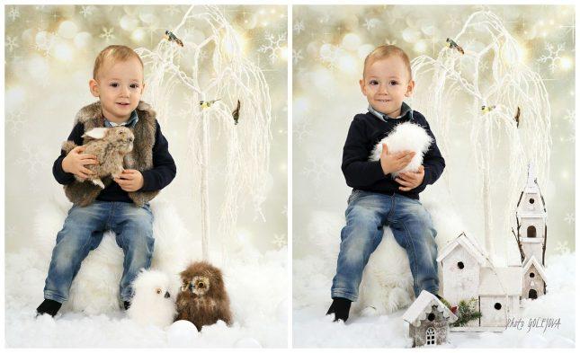 23-vianocne-sovy