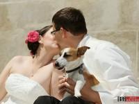fotenie so psom, pes na svadbe