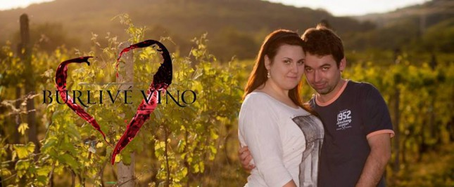 25 foto vo vinici ala burlive vino vylepsenie