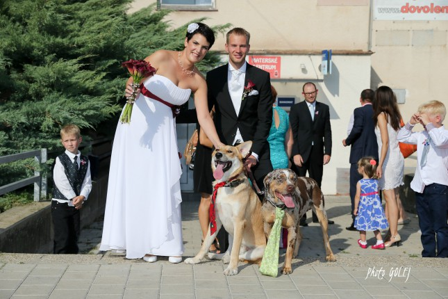 najkrajsi svadobcania