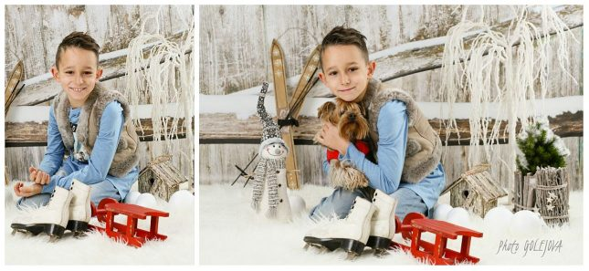 22-vianocna-breza-a-plot
