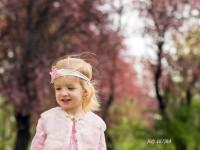 jarne kvitnuce stromy v meste