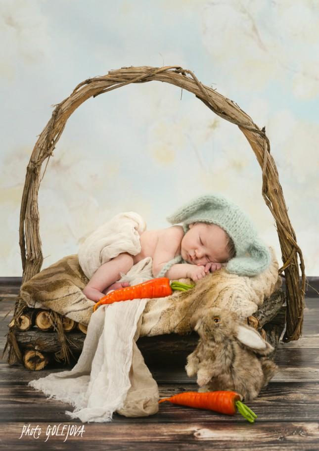 09 novorodenec  zajacik