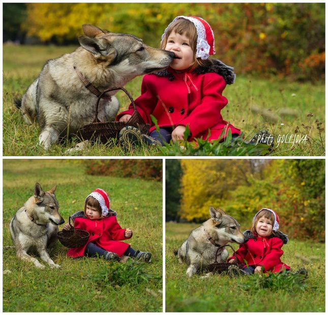 07-moj-priatel-vlk