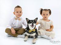 fotky so psom