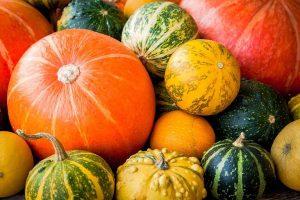 jesenne terminy foteni